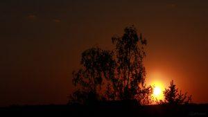 Sonnenuntergang am 8. Mai 2018 um 20:33 Uhr