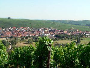 Blick von der Vogelsburg auf Nordheim am Main im Lkr. Kitzingen