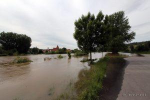 Hochwasser in Sommerhausen am Main