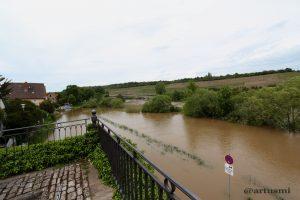 Hochwasser in Winterhausen am Main