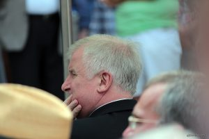 Ministerpräsident Horst Seehofer beim Tag der Franken am 6. Juli 2014 in Ochsenfurt im Lkr. Würzburg