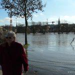 Hochwasser am 16.01.2011 bei Ochsenfurt.