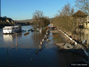 Hochwasser am 16.01.2011 in Würzburg. Mainkuh und überfluteter Willy-Brandt-Kai.