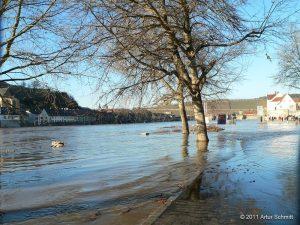 Hochwasser am 16.01.2011 in Würzburg. Der Main in Höhe Willy-Brandt-Kai.