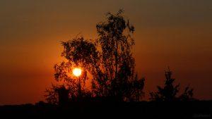 29 Grad im Schatten während des Sonnenuntergangs am 3. August 2018 um 20:35 Uhr