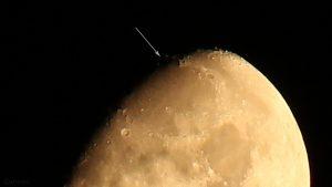 Goldener Henkel am 19. September 2018 um 23:56 Uhr am zunehmenden Mond