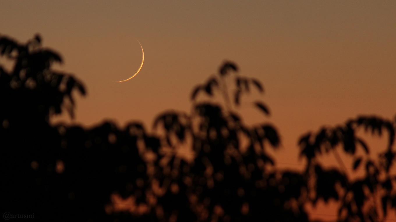 Schmale Mondsichel am 10. Oktober 2018