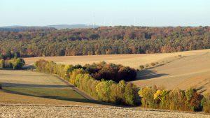 Flurweg bei Eisingen unterhalb Alter Hettstadter Weg am 14. Oktober 2018 um 17:14 Uhr