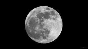 Der Mond am 20. Januar 2019 um 21:04 Uhr - Phase: 99,8% - 6,5 Stunden vor Beginn der Halbschattenfinsternis.