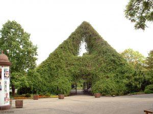 Blumenpyramide vor dem alten LGS-Gelände in Würzburg