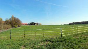 Pferdekoppel am Weiler Erbachshof
