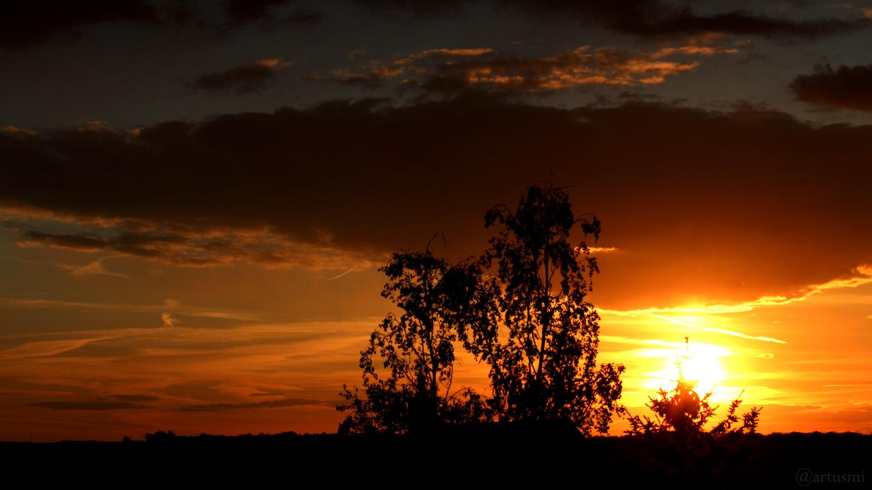 Sonnenuntergang am 14. Mai 2019 um 20:37 Uhr
