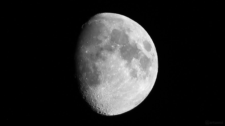 Goldener Henkel am 15. Mai 2019 um 00:14 Uhr am zunehmenden Mond