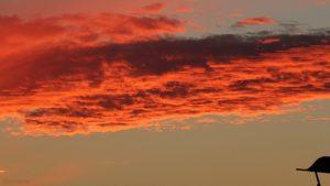 Wolke im Abendrot am 5. Juli 2019 um 21:46 Uhr