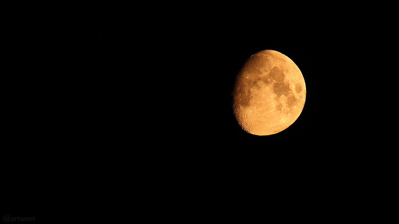 Goldener Henkel am 13. Juli 2019 um 01:04 Uhr am zunehmenden Mond