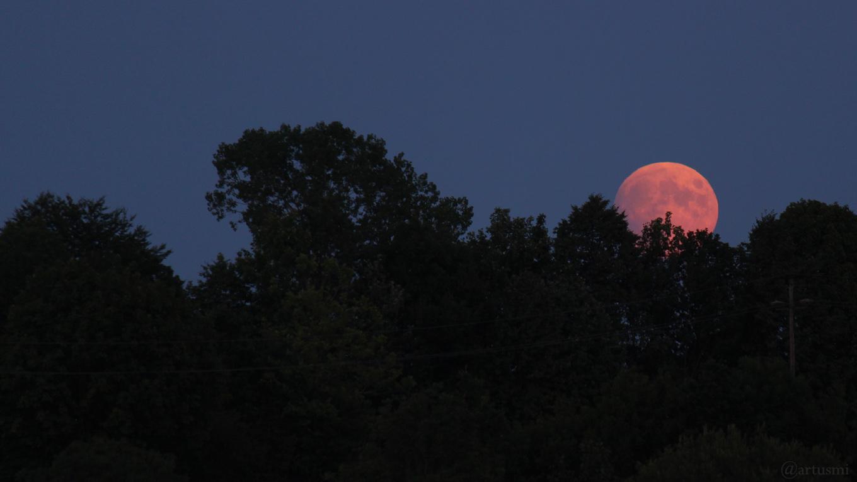 Mondaufgang über dem Guttenberger Forst am 16. Juli 2019 um 21:32 Uhr