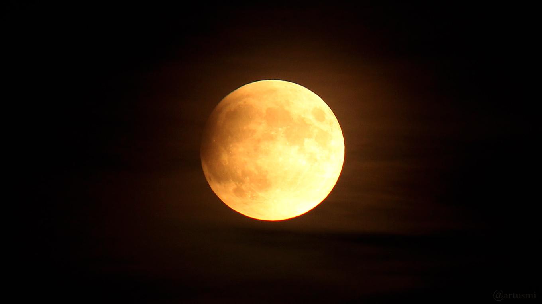 Bildergalerie zur partiellen Mondfinsternis 2019