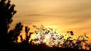 Sonnenuntergang in Eisingen am 25. Oktober 2019 um 17:53 Uhr