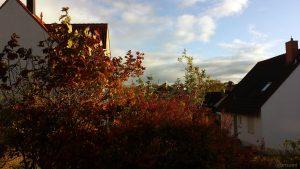 Wetterbild aus Eisingen vom 4. November 2019 um 15:39 Uhr
