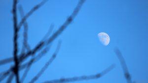 Zunehmender Mond mit Goldenem Henkel am 4. Februar 2020 um 15:36 Uhr