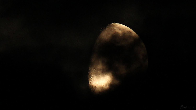 Goldener Henkel am 3. Mai 2020 um 02:55 Uhr am zunehmenden Mond