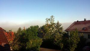 Nebel und Reif in Eisingen am 12. Mai 2020 um 07:24 Uhr