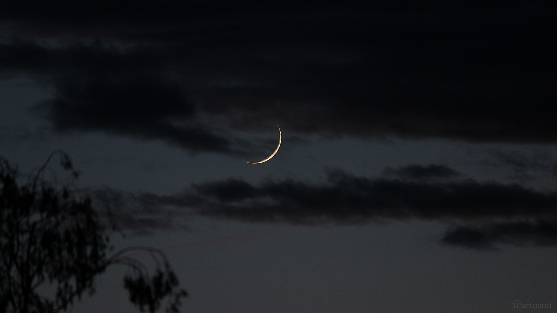 Schmale Sichel des zunehmenden Mondes am 24. Mai 2020 um 22:01 Uhr