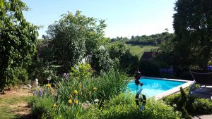 Unser Garten am 1. Juni 2020 um 17:01 Uhr - Meteorologischer Sommeranfang