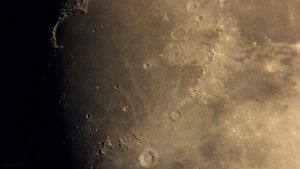 Goldener Henkel am 1. Juni 2020 um 21:31 Uhr am zunehmenden Mond