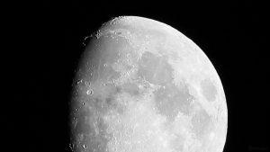 Goldener Henkel am 30. Juni 2020 um 23:42 Uhr am zunehmenden Mond