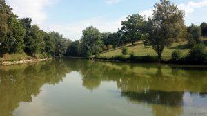 Niedrigwasser am Fischweier bei Sommerhausen am 5. September 2020