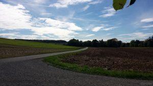 Radweg bei Uettingen im Lkr. Würzburg am 10. September 2020 um 16:05 Uhr