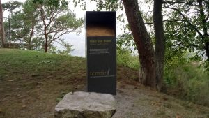 terroir f Sommerhausen - im sogenannten Siegelswäldchen oberhalb der Weinberge
