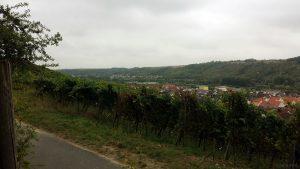 Blick auf Sommerhausen und Goßmannsdorf
