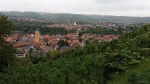 Blick auf Sommerhausen und Winterhausen