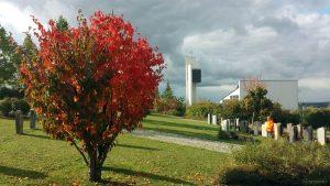 Neuer Friedhof und Philippuskirche in Eisingen am 7. Oktober 2020
