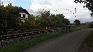 Radweg und Bahnstrecke Würzburg - Treuchtlingen Richtung Winterhausen