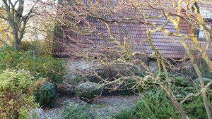 Erster leichter Frost im Herbst 2020 - Unser Garten am 5. November 2020