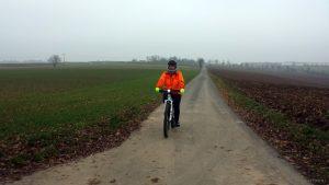 Radweg von Hettstadt in Richtung Waldbüttelbrunn am 25. November 2020