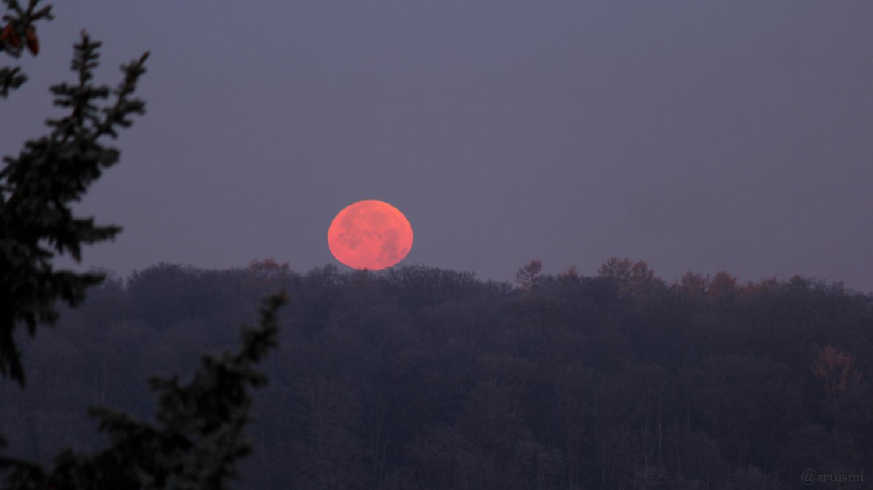Monduntergang in Eisingen am 30. November 2020
