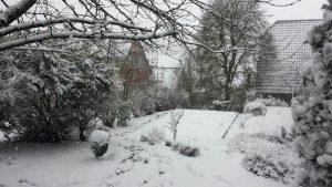 Unser Garten am 24. Januar 2021