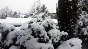Wetterbild aus Eisingen vom 10. Februar 2021