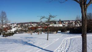 Winterliches Eisingen am 13. Februar 2021