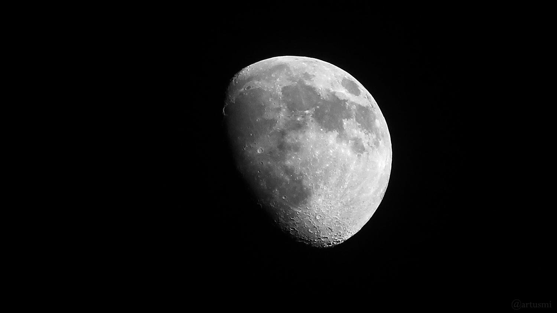 Goldener Henkel am 22. Februar 2021 am zunehmenden Mond