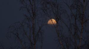Zunehmender Mond verschwindet hinter Wolken