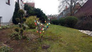 Unser Garten am 8. März 2021