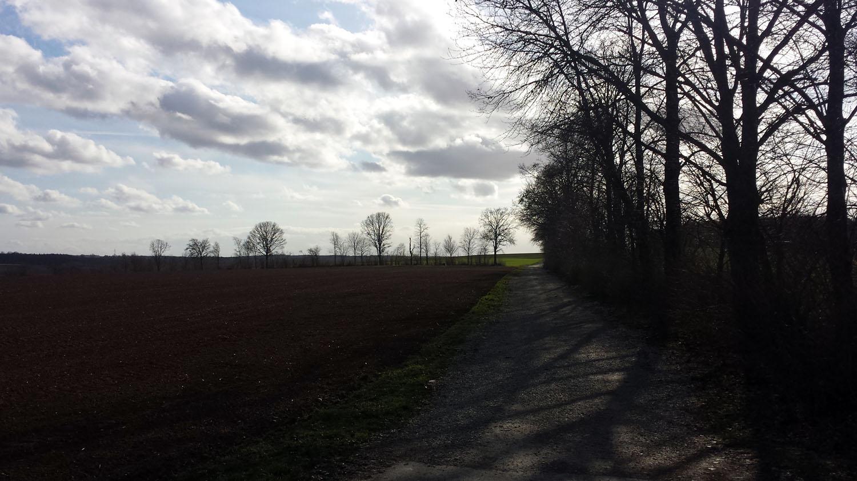 Flur zwischen Hettstadt und Waldbüttelbrunn am 12. März 2021