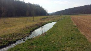 Waldbüttelbrunner Augraben am 4. April 2021