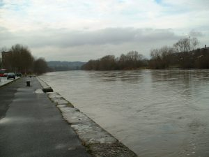 Main mit Hochwasser am 5. Dezember 2002 in Ochsenfurt