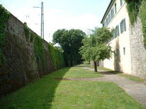 Stadtgraben in Ochsenfurt am 16. Mai 2003